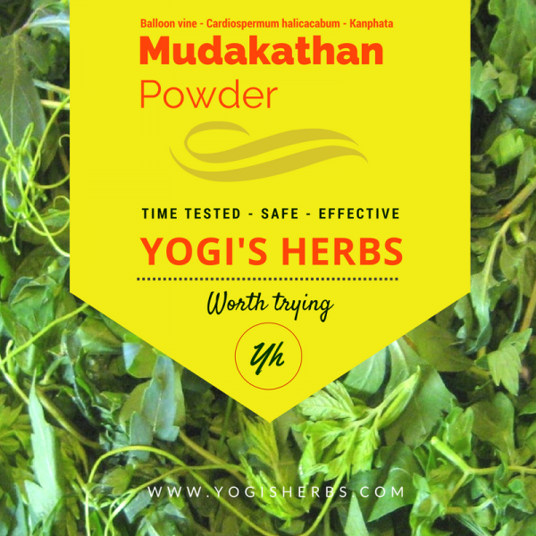 Mudakathan Powder (Cardiospermum halicacabum/ Balloon vine) - Fresh & Pure 1