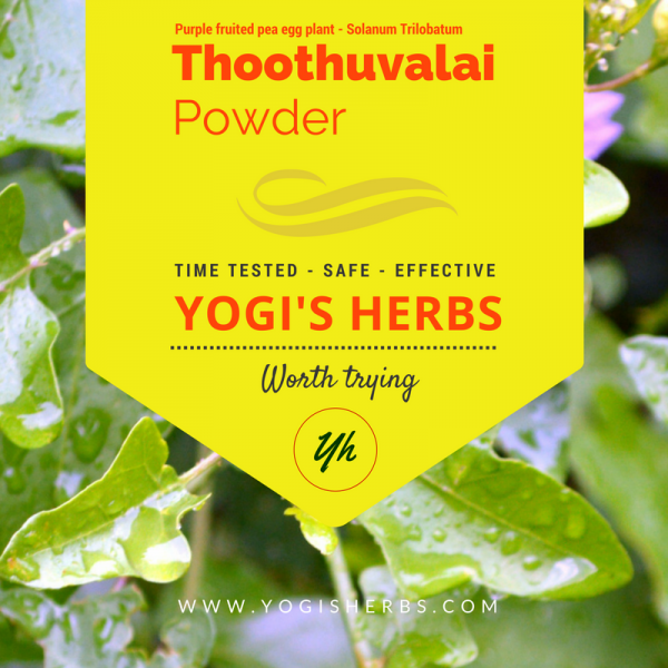 Thoothuvalai powder ( Solanum trilobatum / Thai nightshade )– Fresh & Pure 1