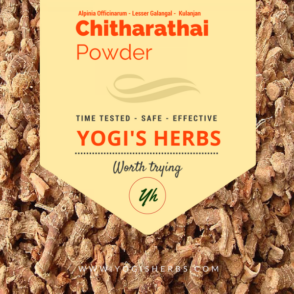 Chitharathai Powder ( Alpinia officinarum / Kulinjan ) - Fresh & Pure 1