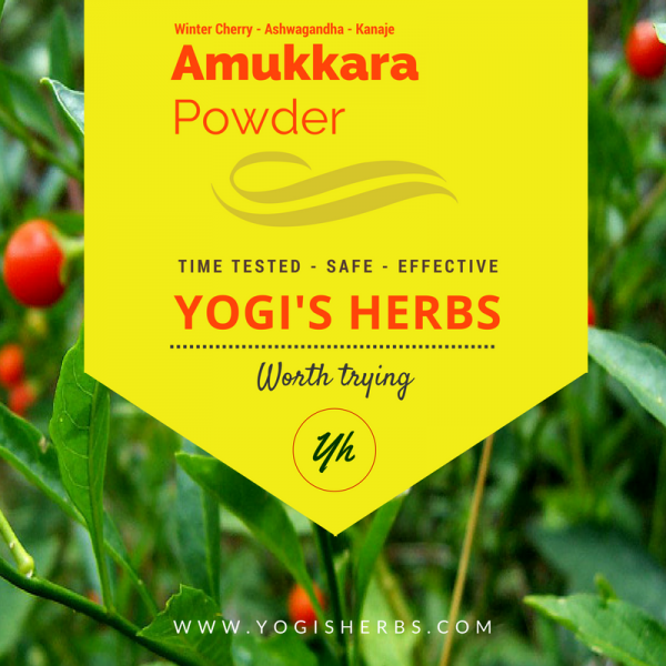 Amukkara Powder ( Ashwagandha / Indian Ginseng )- Fresh & Pure 1