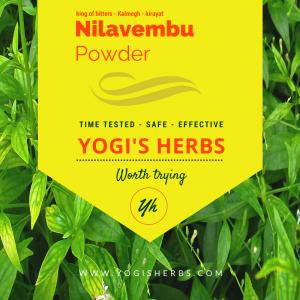 Nilavembu Powder ( Andrographis paniculata / Kirayat ) - Fresh & pure 2