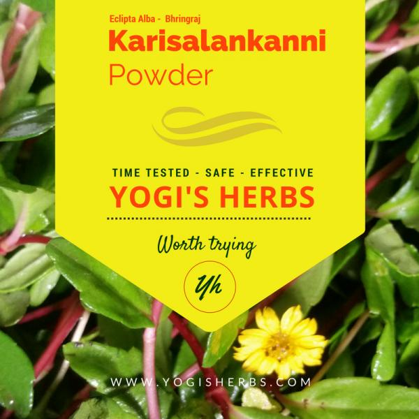 Karisalankanni Powder ( Bhringaraj / Eclipta Alba ) - Fresh & Pure 1