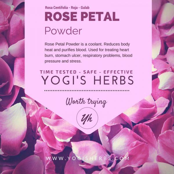 Rose Petal Powder - Rojapoo / Gulab - Fresh & Pure 1