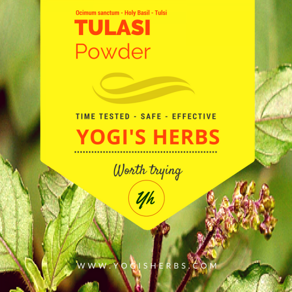 Tulasi Powder - Fresh & Pure 1