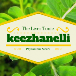 Keezhanelli - The Liver Tonic 8