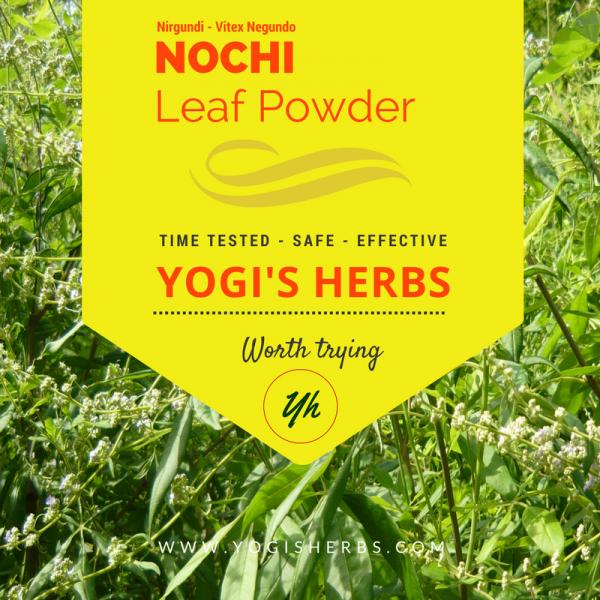 Nochi Leaf Powder ( Vitex negundo / Sindhuvara )- Fresh & Pure 1