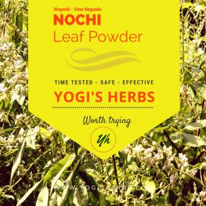 Nochi Leaf Powder ( Vitex negundo / Sindhuvara )- Fresh & Pure 2