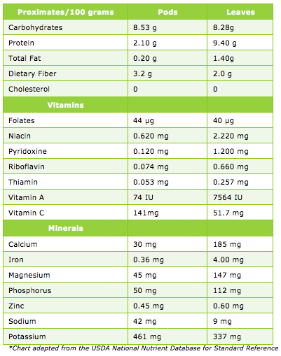 Organic Murungai Leaf Powder - ( Moringa Oleifera / Drumstick ) - Fresh & Pure 3