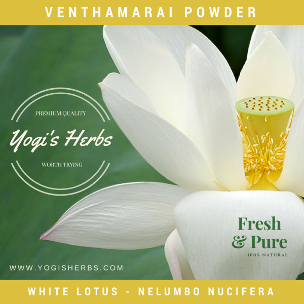 Venthamarai Powder (Nelumbo nucifera) – Fresh & Pure 1