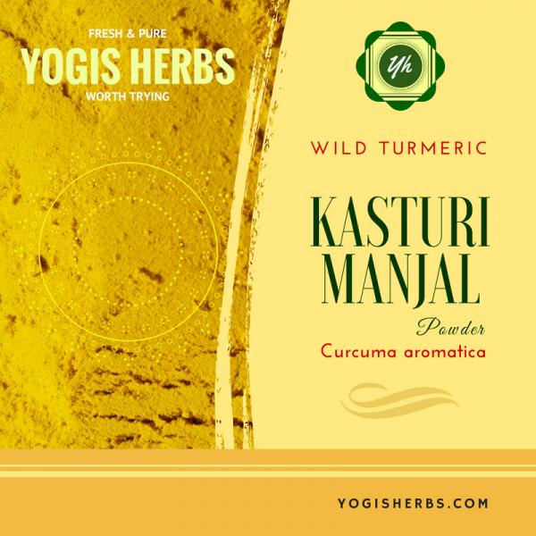 Kasturi Manjal Powder - (Wild Turmeric ) Fresh & Pure 1