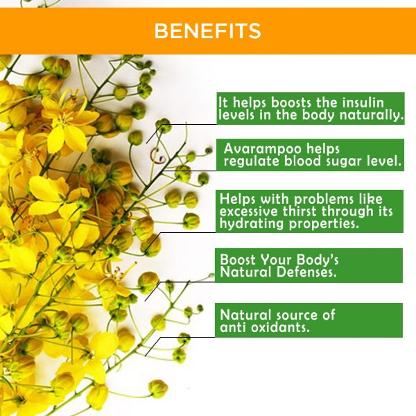 AVARAMPOO Tea / Herbal Infusion ( Senna Auriculata ) - 20 Dip Bags 4