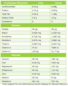 MURUNGAI Tea / Instant Kashayam (Moringa Oleifera) – Herbal Infusion – 20 Dip Bags 4